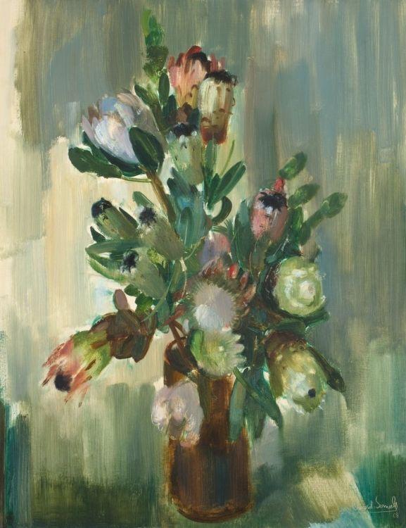 Clement Serneels; Proteas