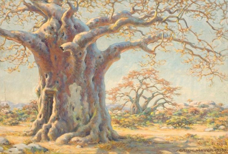 Erich Mayer; The Old Baobab Tree