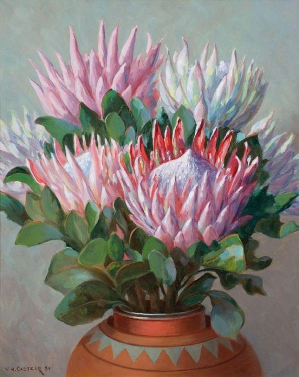 Willem Hermanus Coetzer; Proteas in an Earthenware Vase