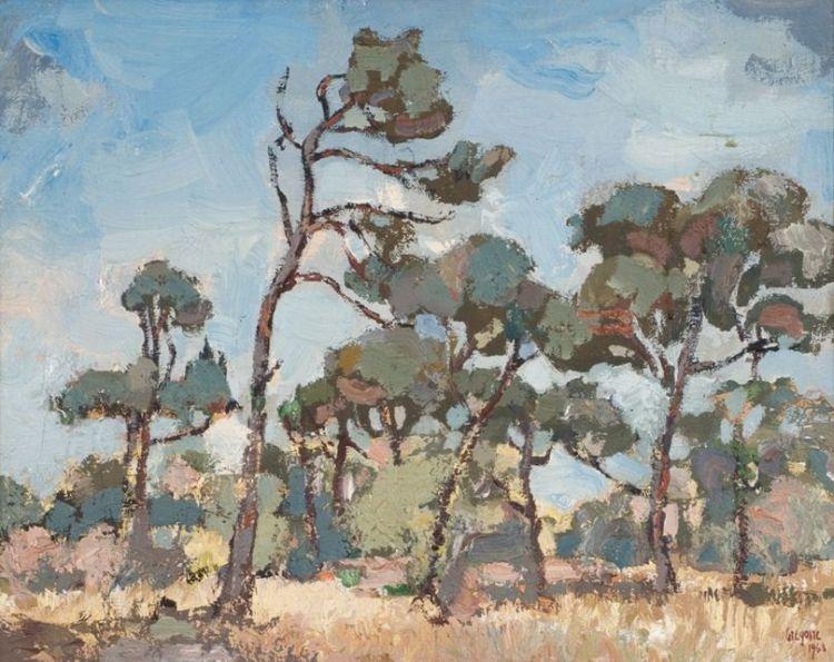 Gregoire Boonzaier; Firs, Cape