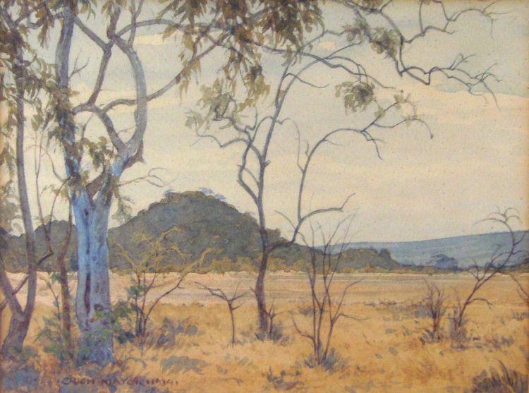 Erich Mayer; An Extensive Bushveld Landscape