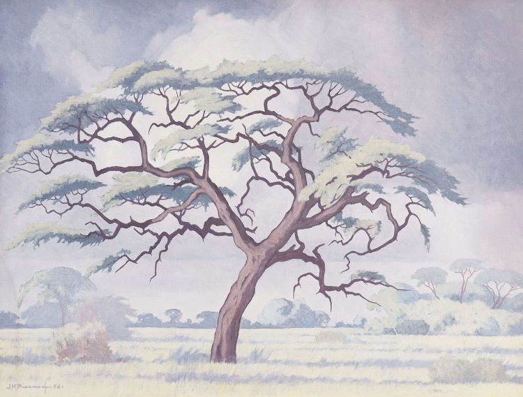Jacob Hendrik Pierneef; Kameeldoring, Kalahari