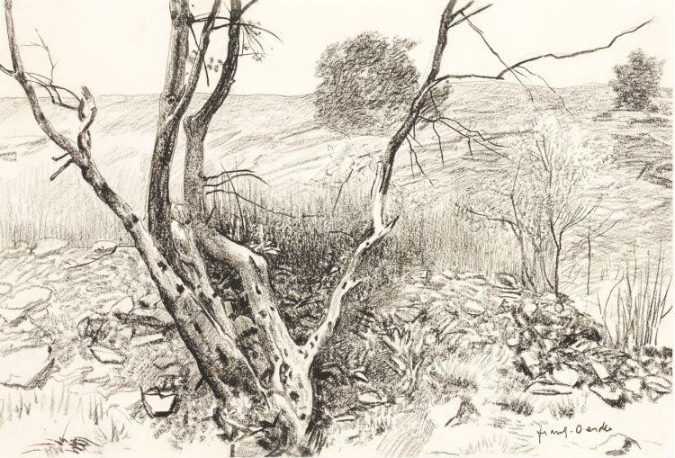 Frans Oerder; Die Fonteine Pretoria