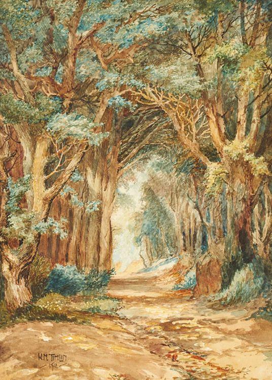 William Timlin; A Verdant Avenue