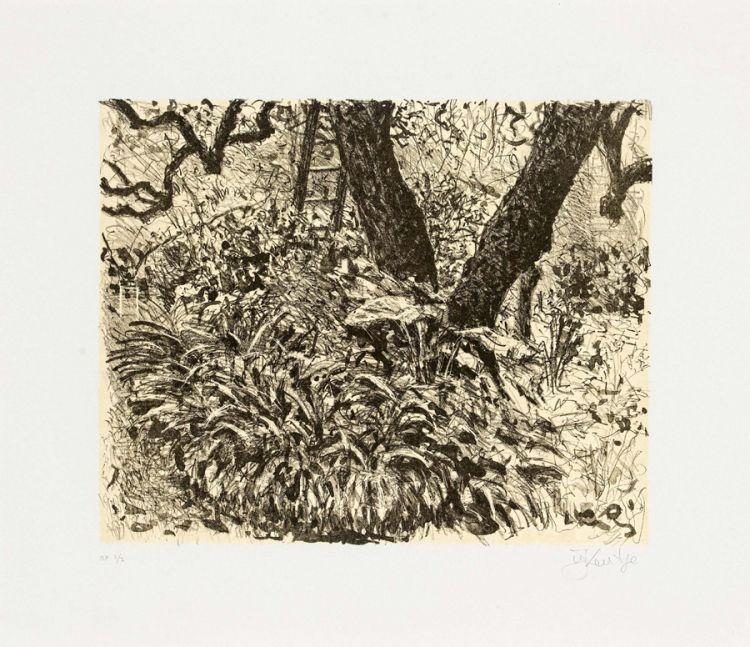 William Kentridge; Garden at Houghton Drive (Agapanthus)