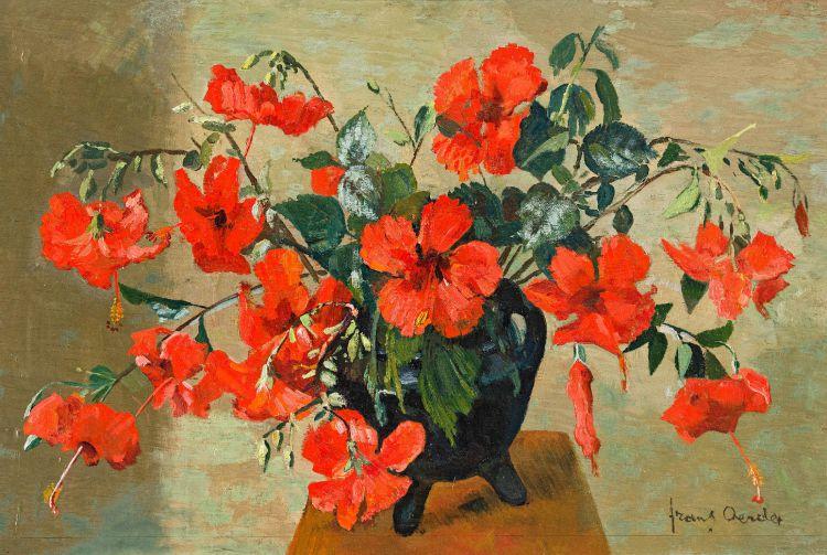 Frans Oerder; Hibiscus