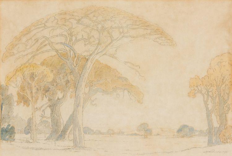 Jacob Hendrik Pierneef; Bushveld Trees