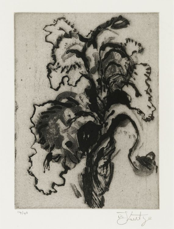 William Kentridge; Iris