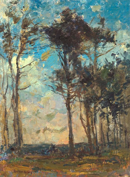 Adriaan Boshoff; Landscape with Trees