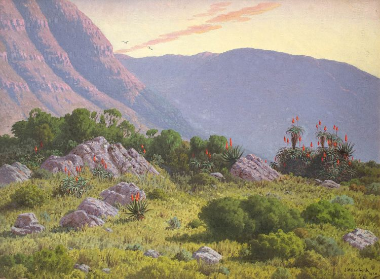 Jan Ernst Abraham Volschenk; The Glories of Morn over Mountain, Rocks and Aloes Spread