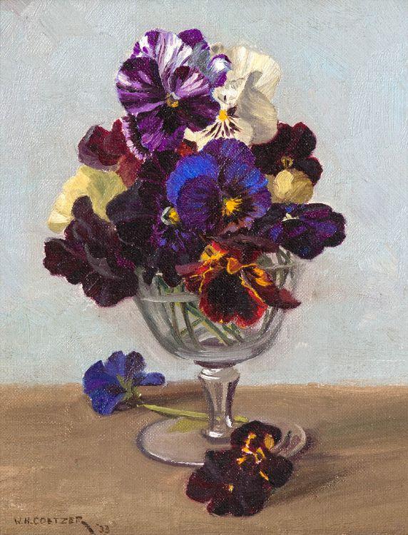 Willem Hermanus Coetzer; Pansies