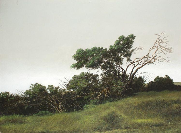 John Meyer; Summer Bush