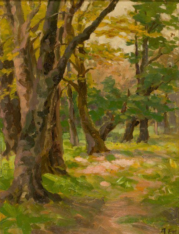 Allerley Glossop; Forest Glade