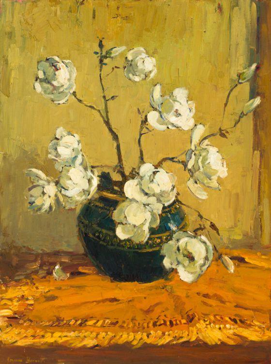 Adriaan Boshoff; Magnolias