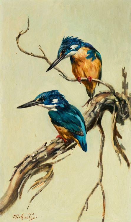 Heinrich von Michaelis; Pair of Half-collared Kingfishers