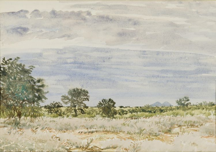 Adolph Jentsch; Velt (sic) with Distant Mountains, SW Africa