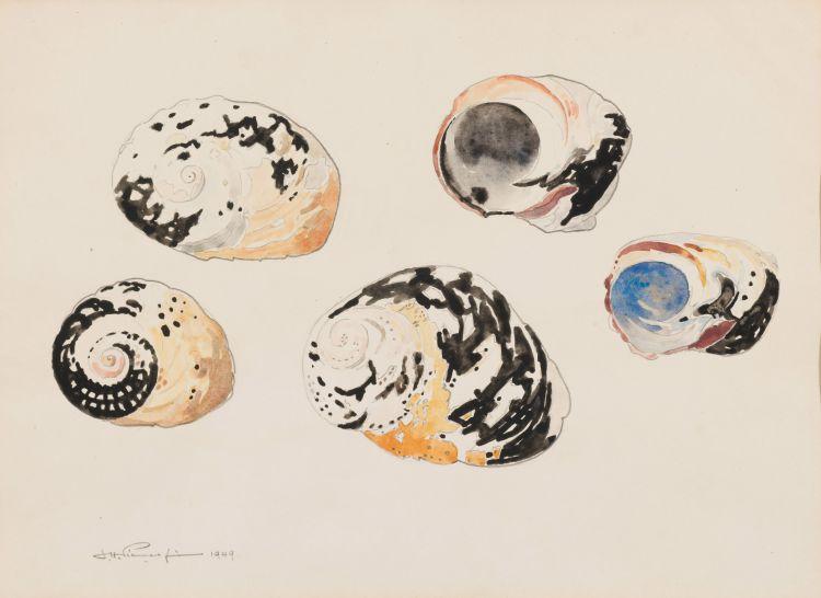 Jacob Hendrik Pierneef; Shells