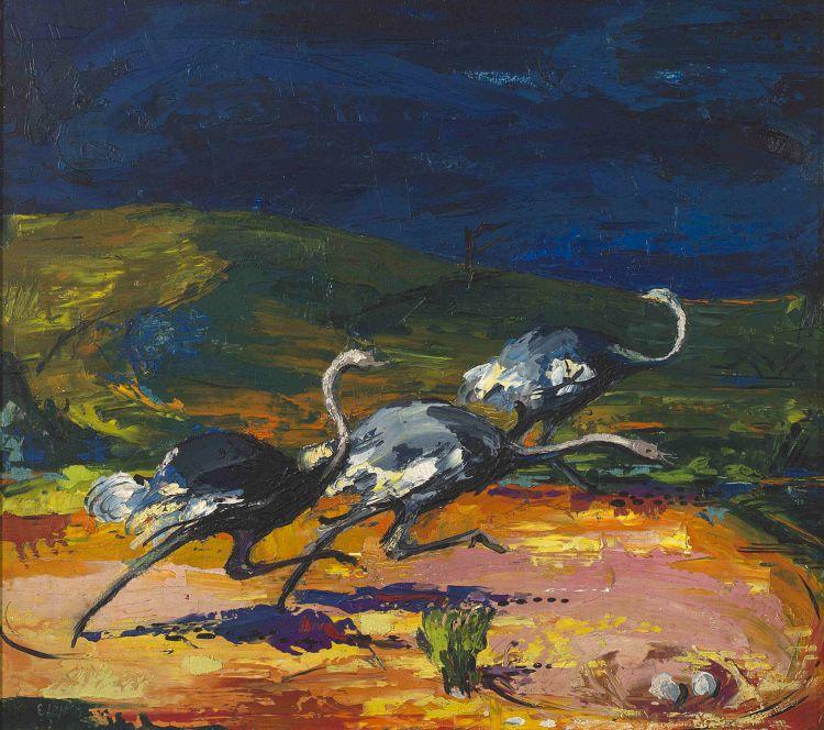 Zakkie Eloff; Ostriches