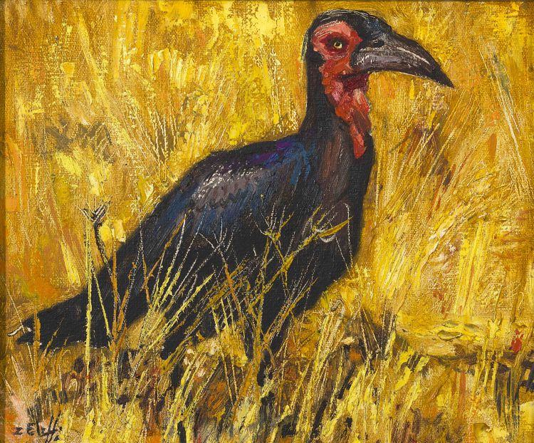Zakkie Eloff; Ground Hornbill
