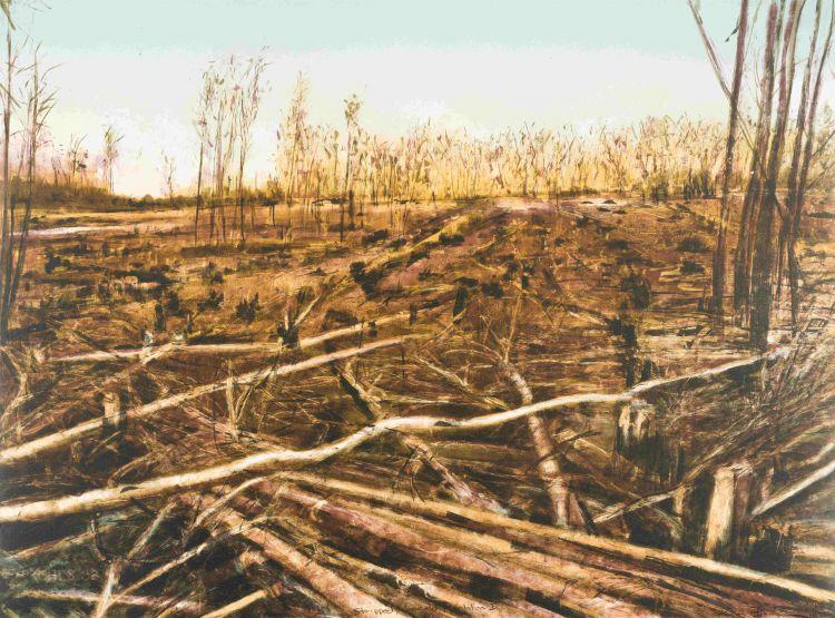 Kim Berman; Stripped Lowveld Plantation I
