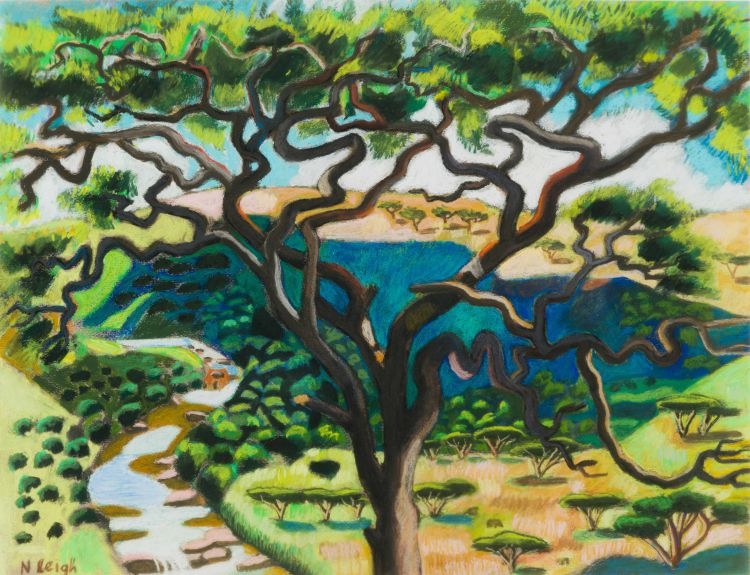 Nicky Leigh; Thorn Tree with Umgeni River