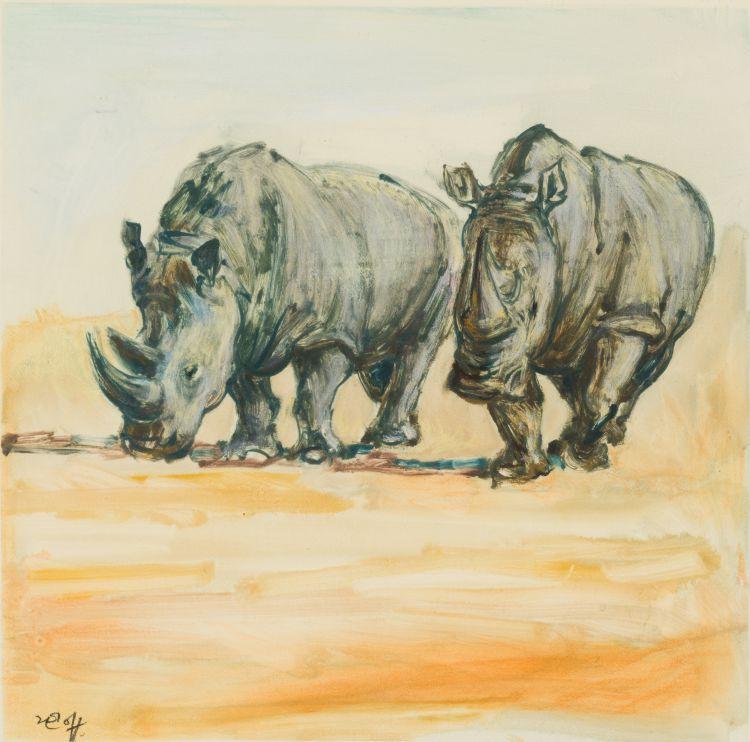 Zakkie Eloff; Rhinos