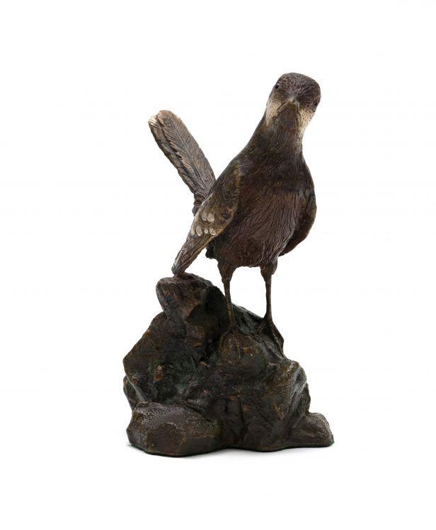 Robert Leggat; Cape Rock-Jumper (Chaetops frenatus)