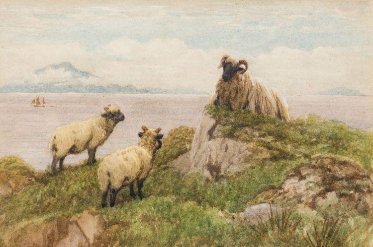 John Robert Keitley Duff; Sheep along the Shoreline