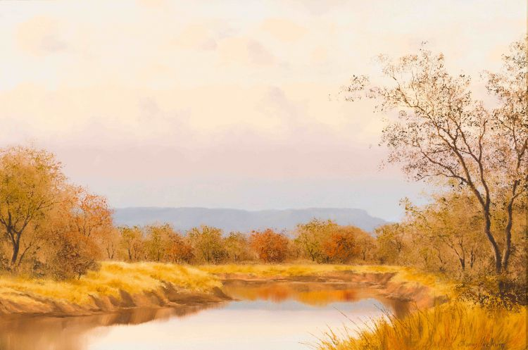 Thomas Hacking; Bushveld Landscape with Stream