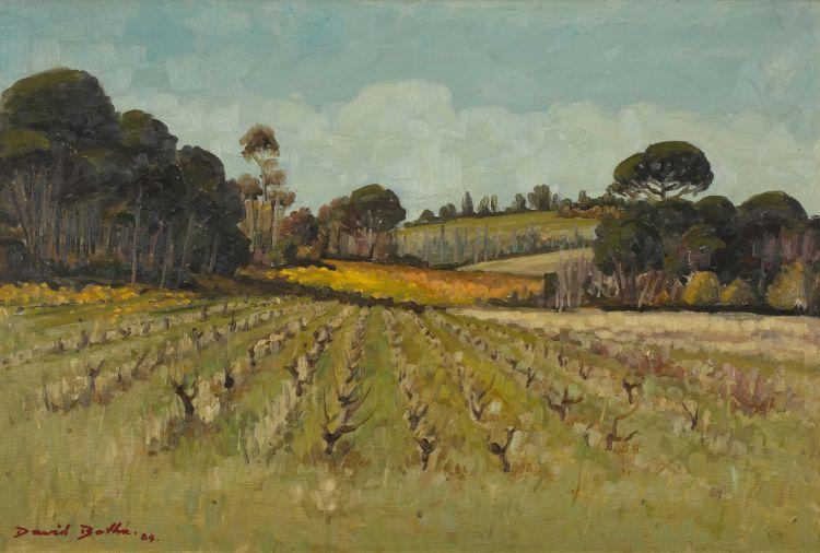 David Botha; Vineyard after Harvest