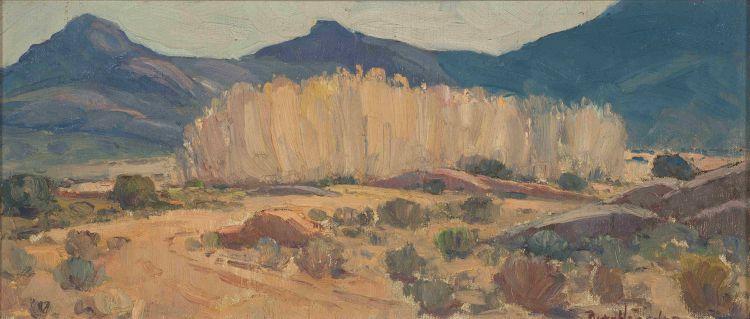 Piet van Heerden; Landscape