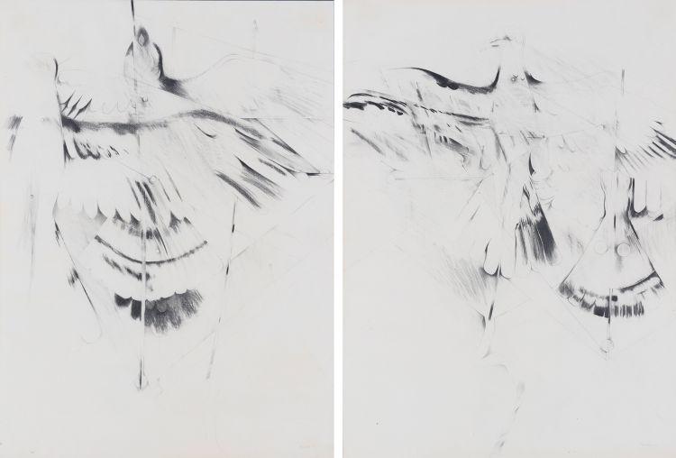 Andrew Verster; Abstracted Birds