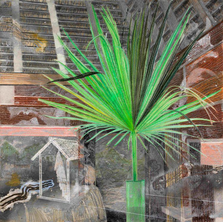 Karel Nel; Presence: Leaf Shrine, North Island, Seychelles