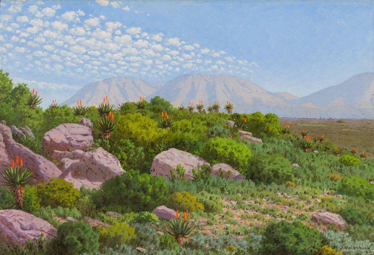 Jan Ernst Abraham Volschenk; A Riversdale Landscape – Rock, Bush and Aloe