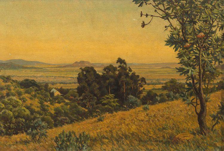 Erich Mayer; Lowveld Landscape