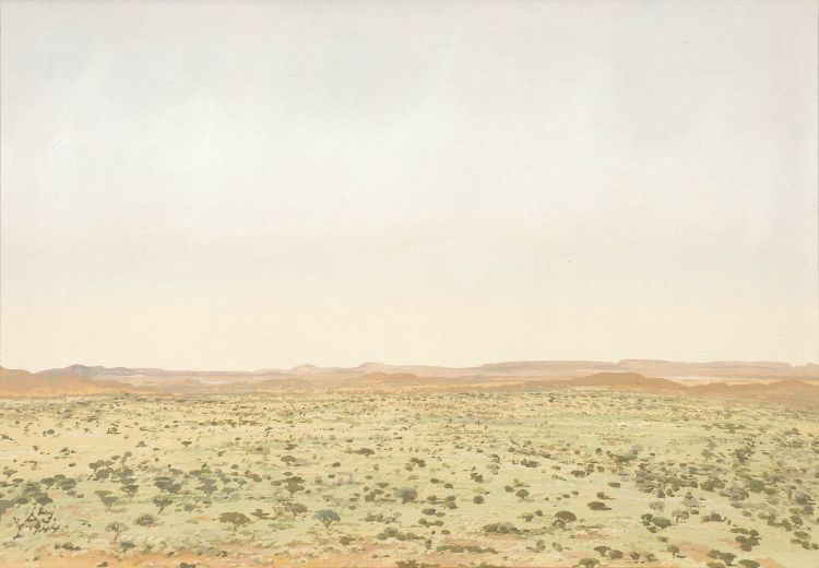 Adolph Jentsch; An Extensive Namibian Landscape
