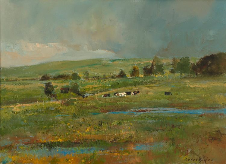 Errol Boyley; Cows, Farmland