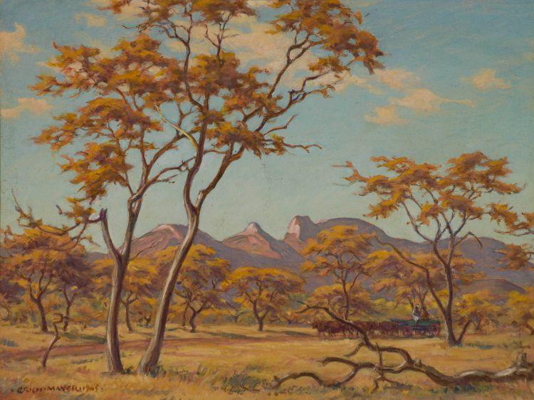 Erich Mayer; Bushveld Scene with Ox Cart