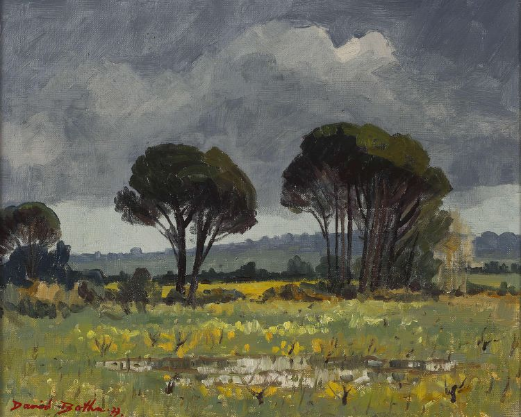 David Botha; Landscape with Trees