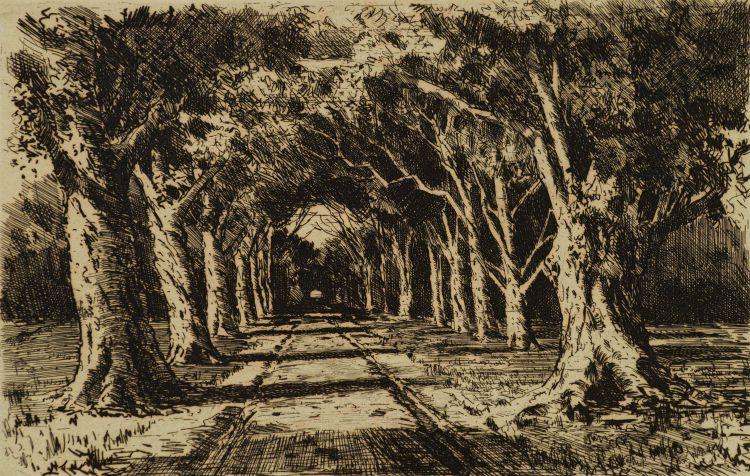 Tinus de Jongh; The Avenue, Constantia, Cape