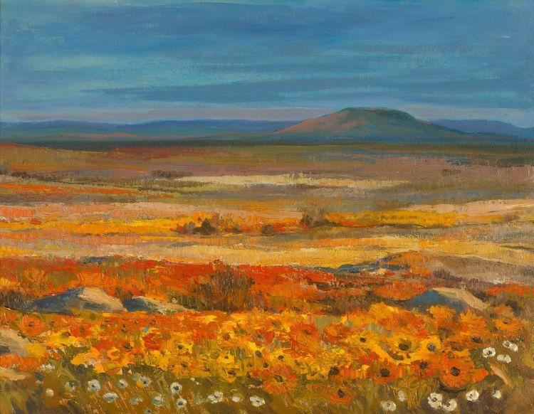 James Thackwray; Springtime Namaqualand