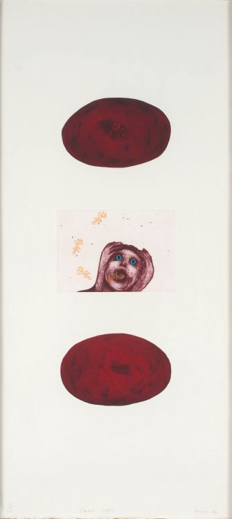 Penny Siopis; Shame Pools