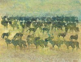 Gordon Vorster; A Herd of Gemsbok
