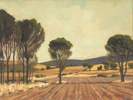 David Botha; A Ploughed Field with Trees