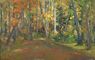 Piet van Heerden; Forest