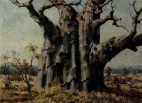 Otto Klar; Baobab