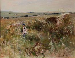 Errol Boyley; A Girl in a Field of Cosmos