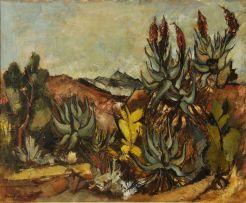 Paul du Toit; Aloes, Riversdale