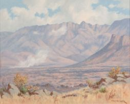 Willem Hermanus Coetzer; A Pilanesberg Landscape with a Fire in the Distance