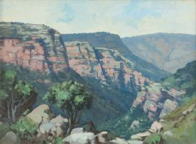 Willem Hermanus Coetzer; Mountainous Gorge, Natal